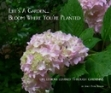 Bloom_where_planted_cover