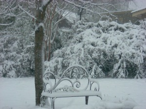 Bench in snow 03 07 08
