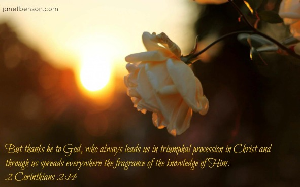 fragrance of the knowledge of God 2 Corinthians 2.14