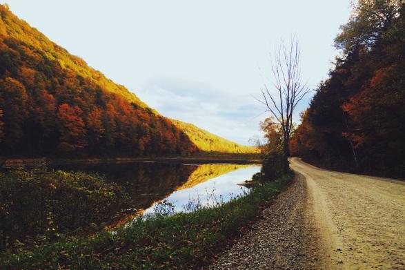 gravel road along mountain stream in fall